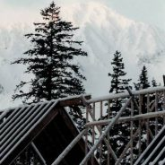 Rafters and Snow